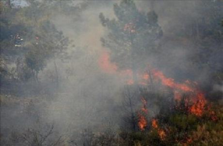 Alertan por nuevo incendio en el Parque Nacional Santa Rosa
