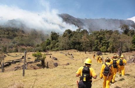 Costa Rica lanza estrategia para prevenir incendios forestales