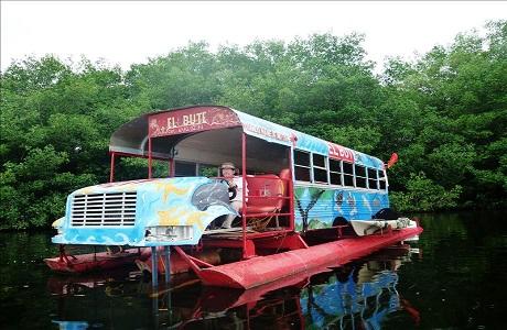 Científicos buscan los últimos manatíes en autobús flotante