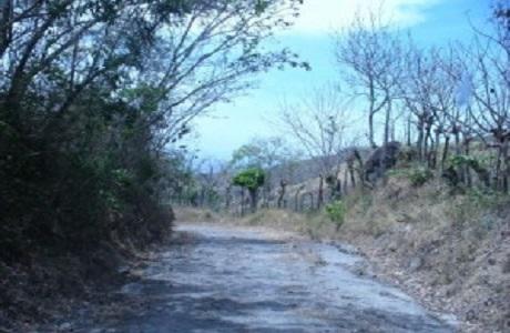 El museo Juan Santamaría prepara caminatas conmemorativas
