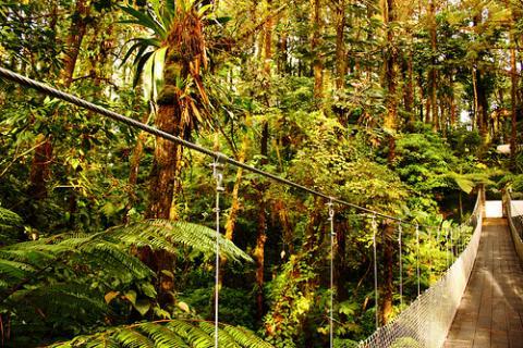 turismo-costa-rica.jpg